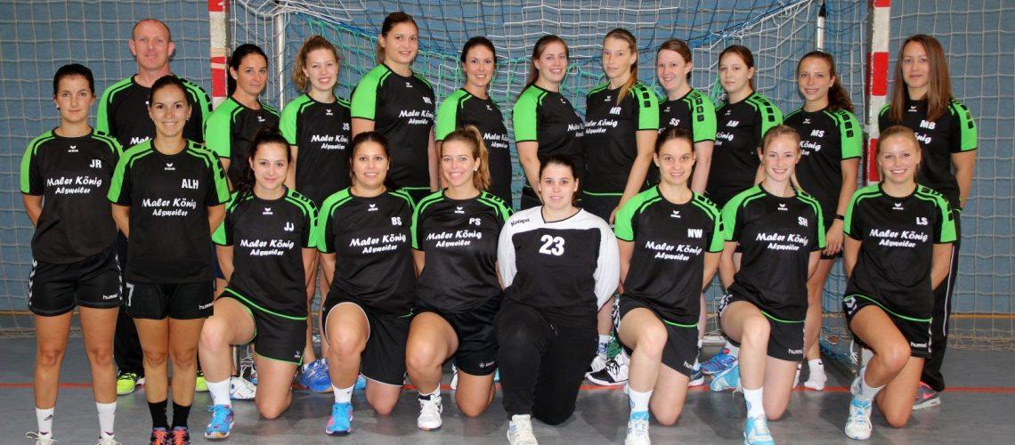 Mannschaftsfoto HSG Moskitos Frauen 3
