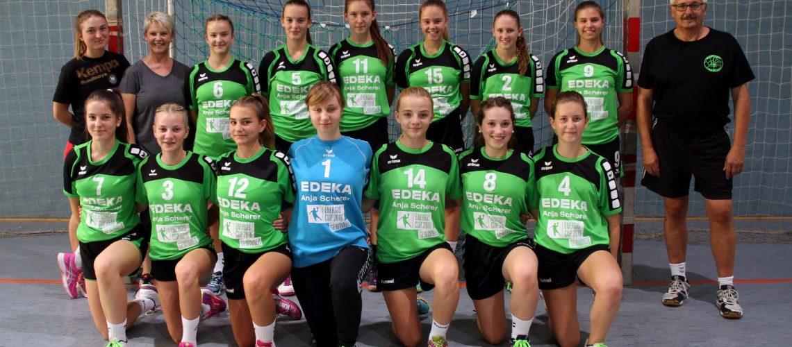 Mannschaftsfoto HSG Moskitos Jugend C1