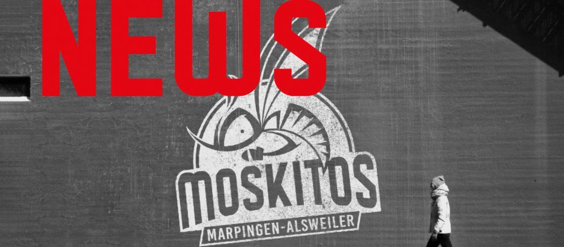 moskitonews